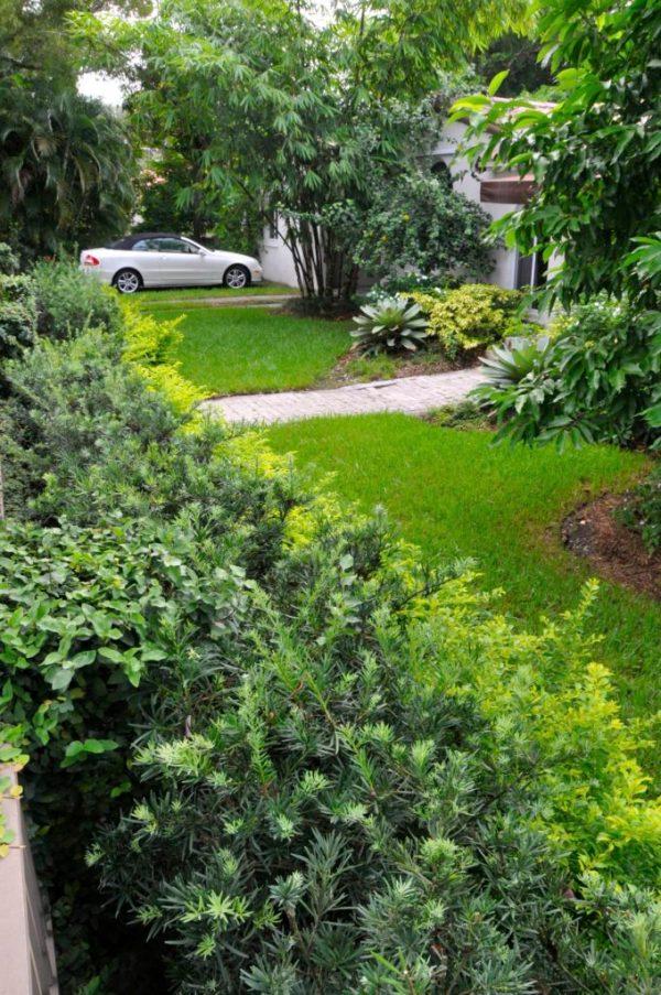 landscape ideas south florida front