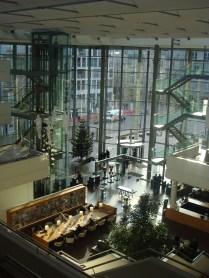 In de Bibliotheek - In the Library