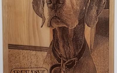 Personalized Pet Memorial Plaque
