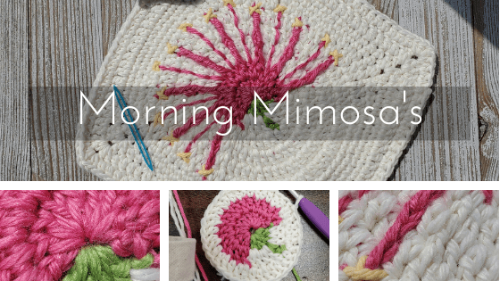 morning mimosa's cover