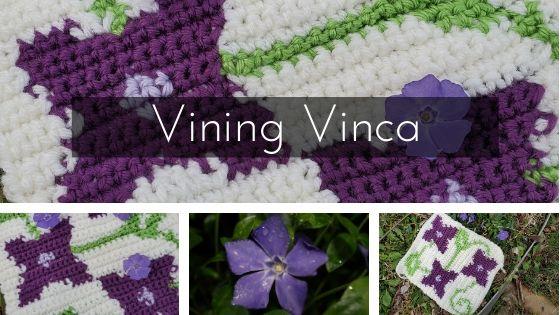 Vining Vinca Blog post