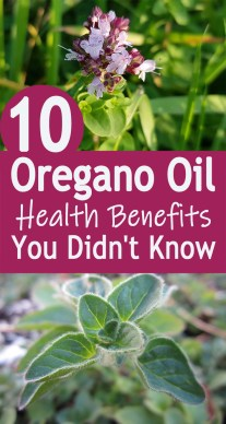 10 Oregano Oil Health Benefits You Didn't Know