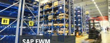 SAP EWM BATCH MANAGEMENT CONFIGURATION