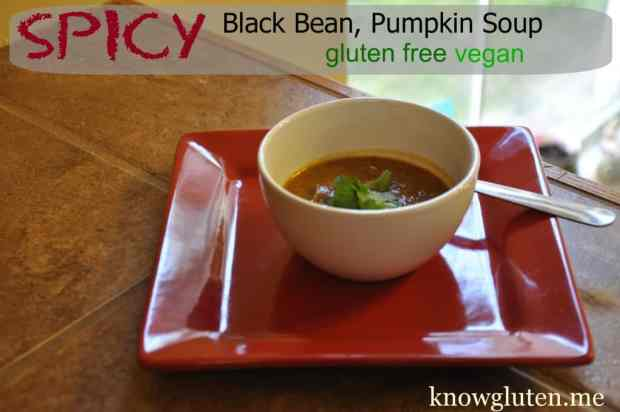 Spicy Black Bean, Pumpkin Soup, Gluten Free, Vegetarian