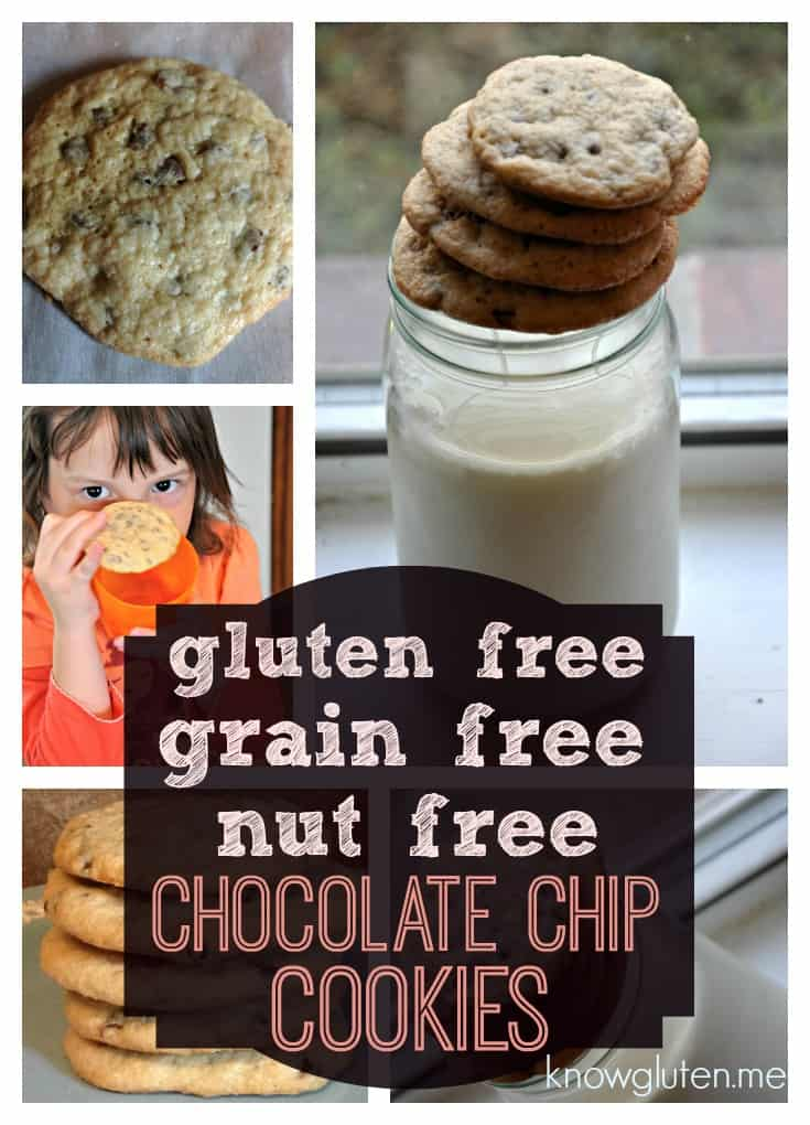 Gluten Free, Grain Free, Nut Free Crunchy Chocolate Chip Cookies from knowgluten.me