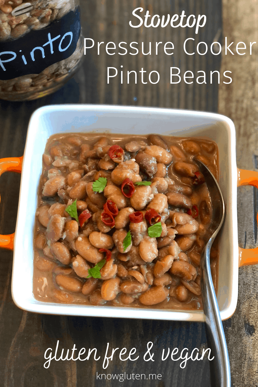 closeup of a bowl of pinto beans