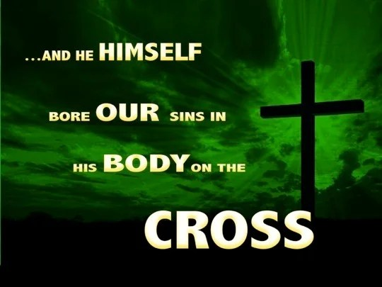 1 Peter 224 and He Himself bore our sins in His body on