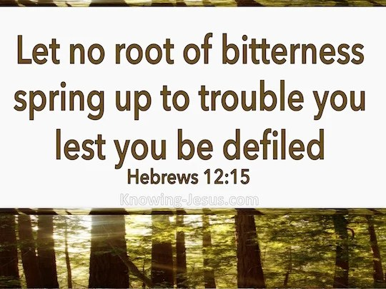 Hebrews 1215 See to it that no one comes short of the