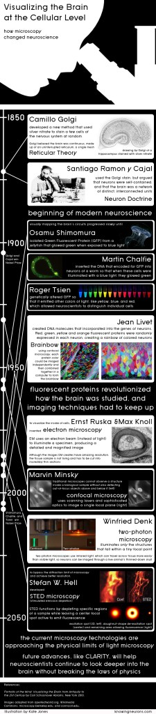 Microscopy Infographic by Knowing Neurons
