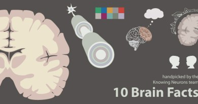 10 Brain Facts by Knowing Neurons