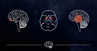 Bet on your Brain - Knowing Neurons