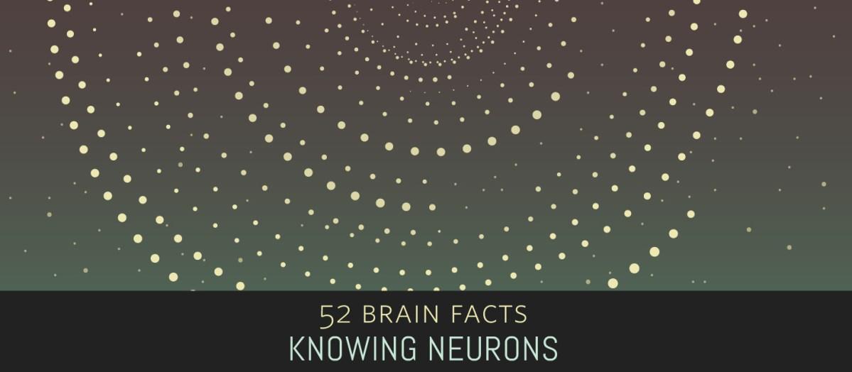 52 Brain Facts