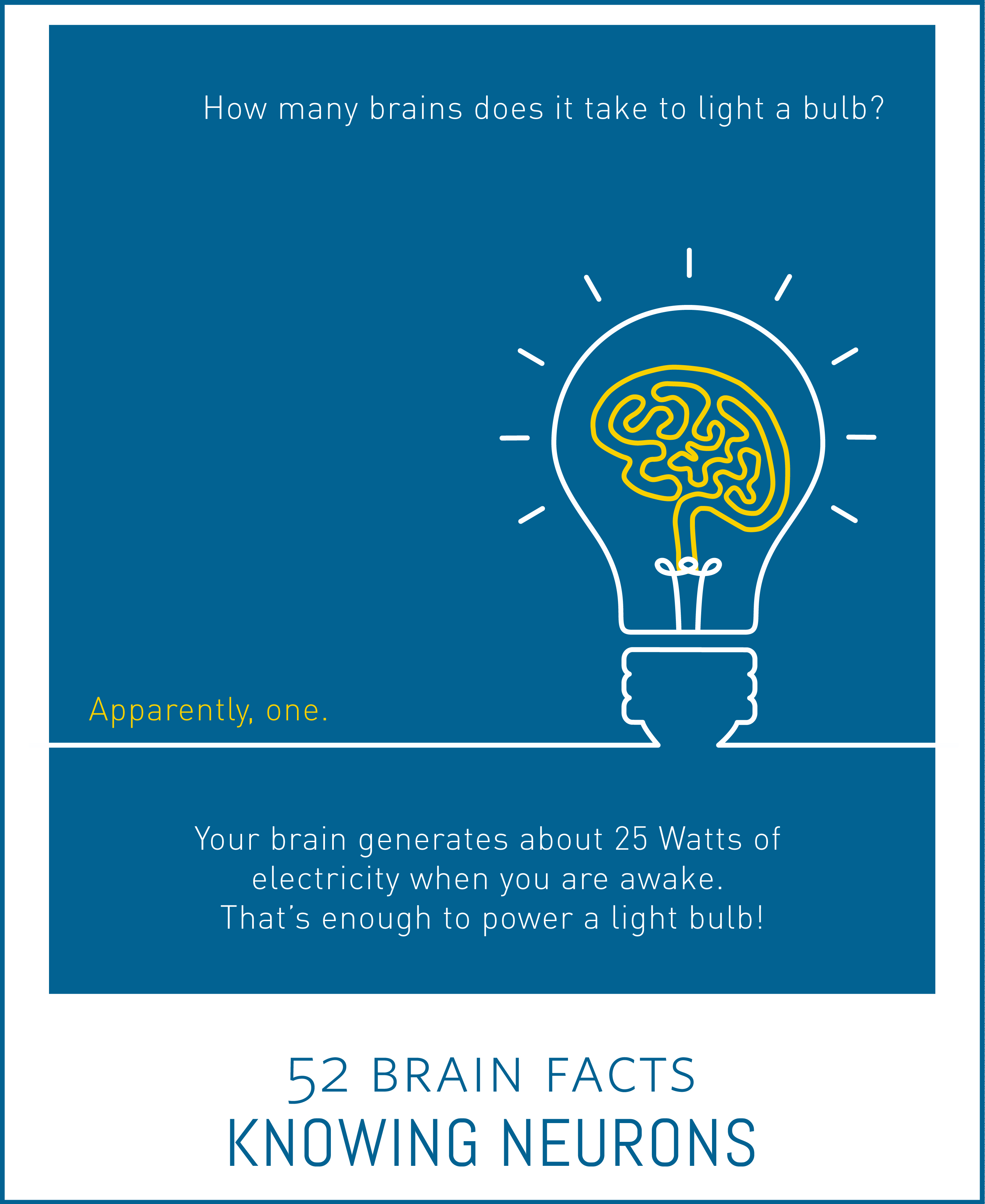 Myth or Fact? It would take ten human brains to match the energy consumption of one light bulb.