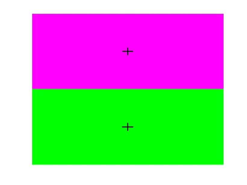 You can create a 'greener than green' afterimage by fixating on the cross in the upper half of the image for 20 seconds, then shifting your gaze to the cross in the lower half.