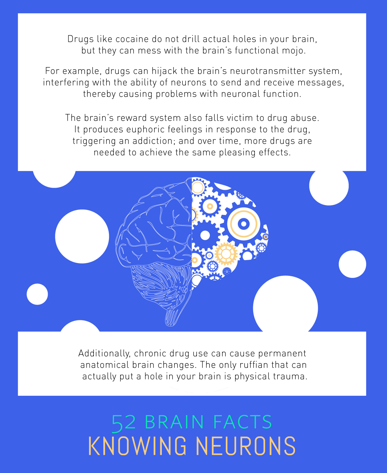 Myth or Fact? Drug abuse can put holes in your brain.