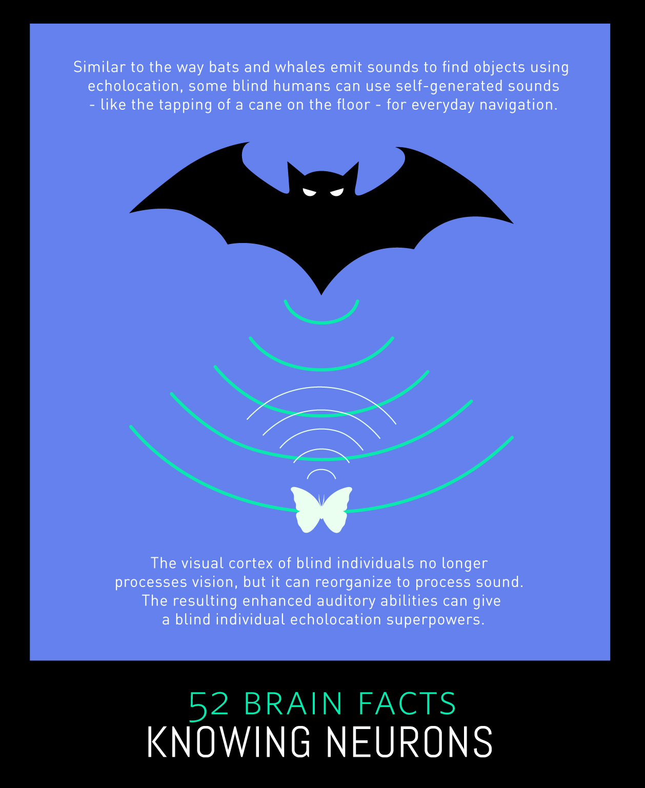 Myth or Fact? Some people can use echolocation.