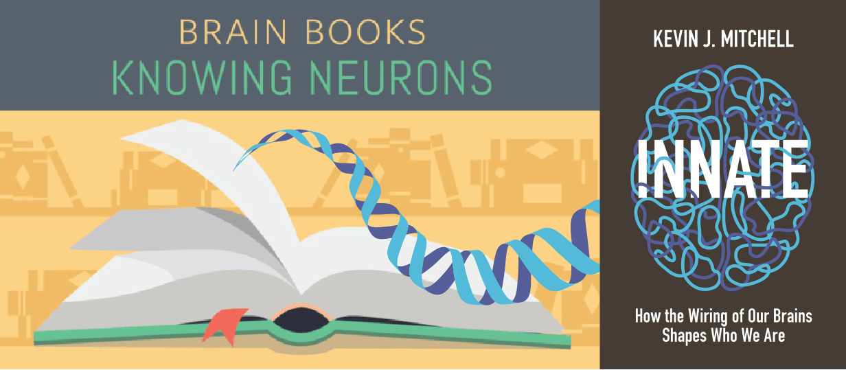 Prime Book Review Innate How The Wiring Of Our Brains Shapes Who We Are Wiring Database Gramgelartorg