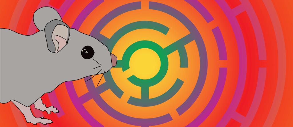 Spatial Navigation - Mouse