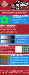 A Close Up Look #5 Optical Illusions