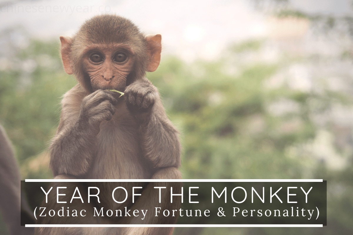 Chinese astrology year of the monkey 2021 calendar