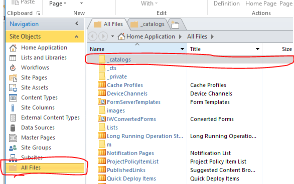 SharePoint designer catalog
