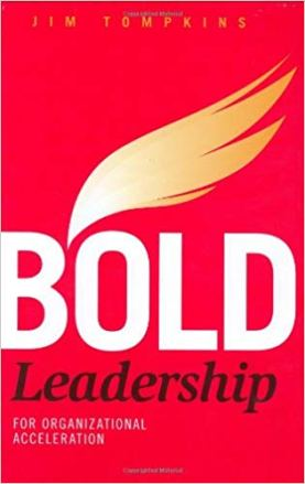 Bold Leadership for Organizational Acceleration Book