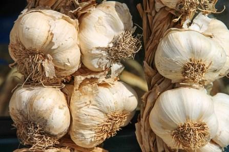 10 amazing health benefits of garlic use