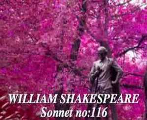 Sonnet 116 Analysis and Summary