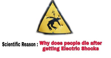 Why a person die due to electric shock
