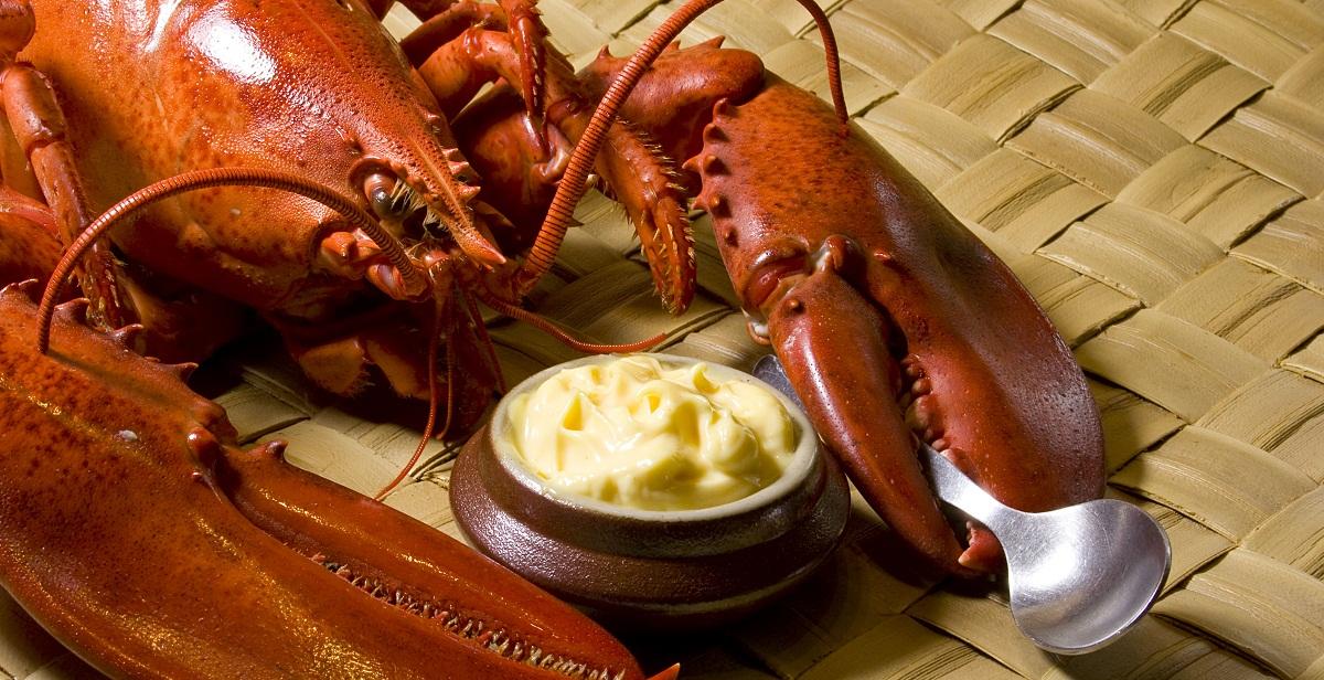 Lobster History