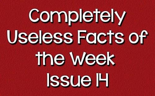 uselessfacts header