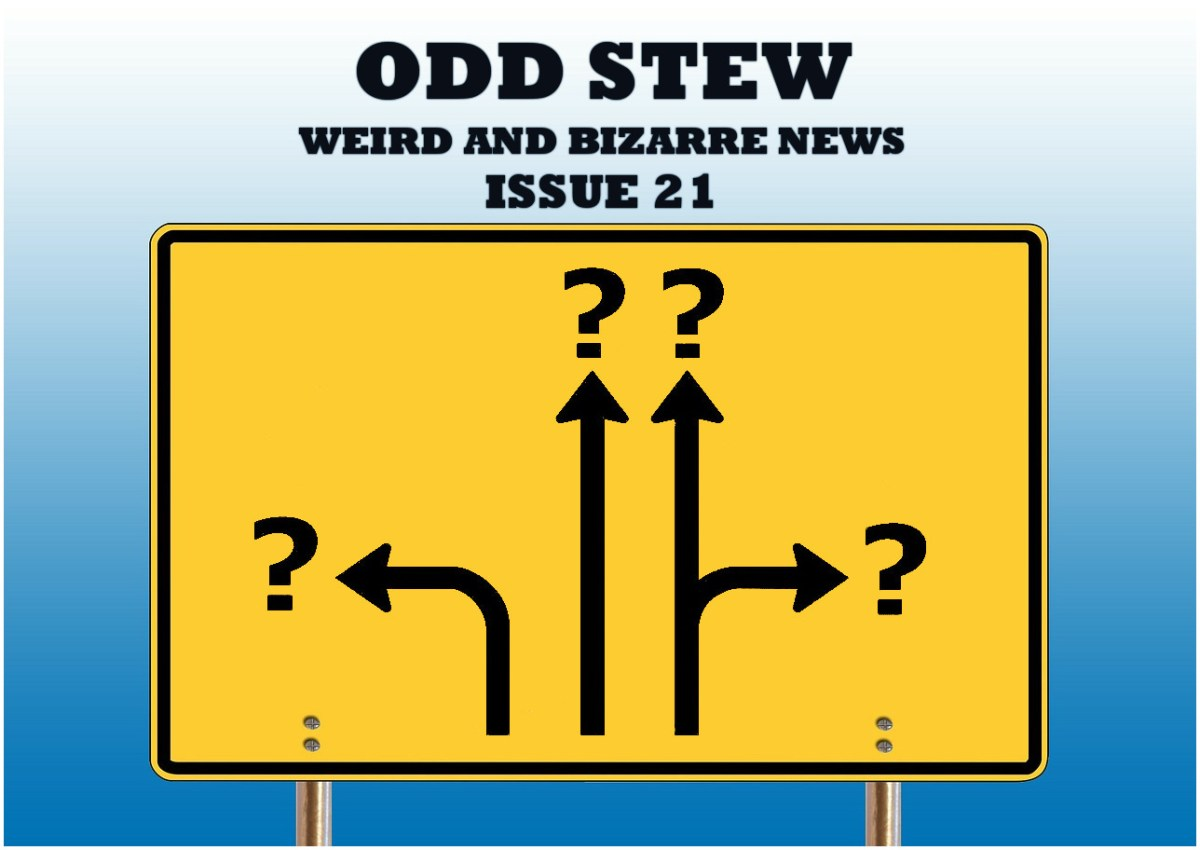 Odd Stew – Weird and Bizarre News – Issue 21