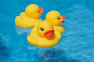 The Great Rubber Ducky Journey