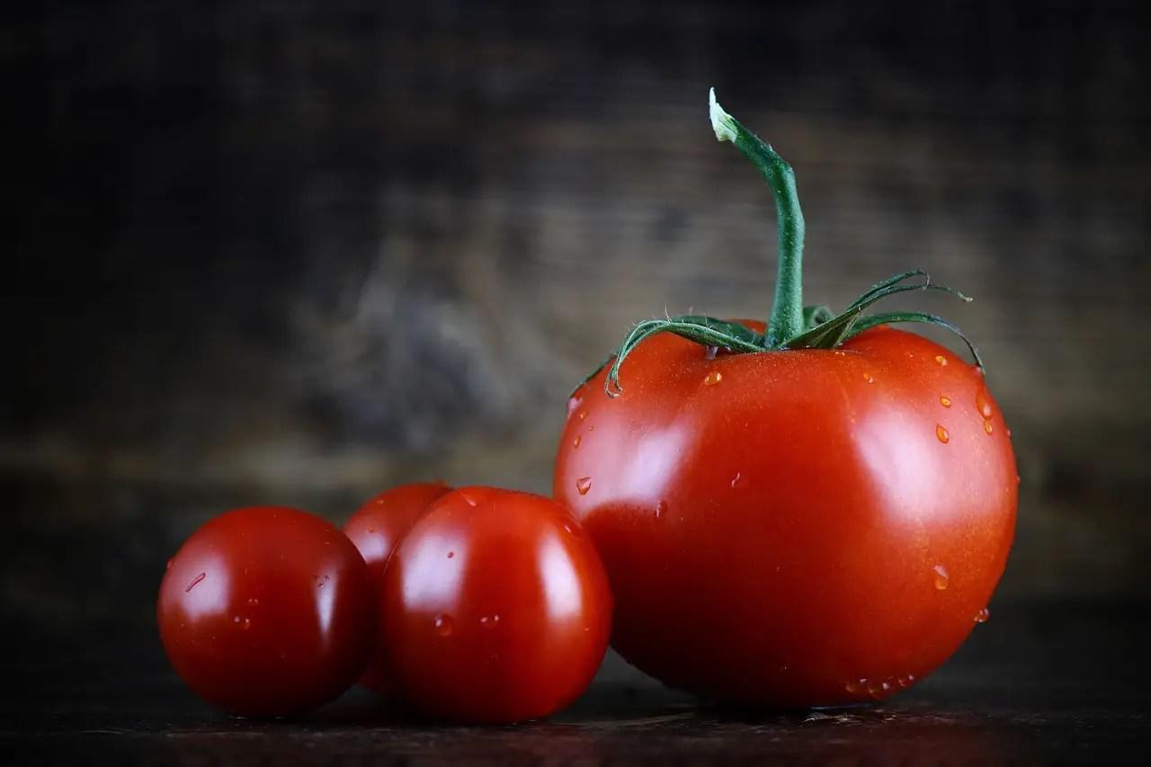 The Tomato and the Supreme Court