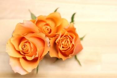 紫やオレンジと相性が良い色を理解して、コーデに活かしましょう