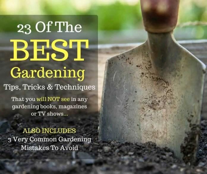 Gardening tips & hacks