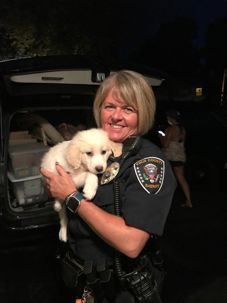KCSO animal control officer holding a puppy