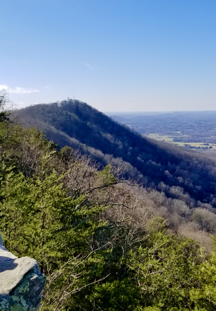 View from top of house mountain