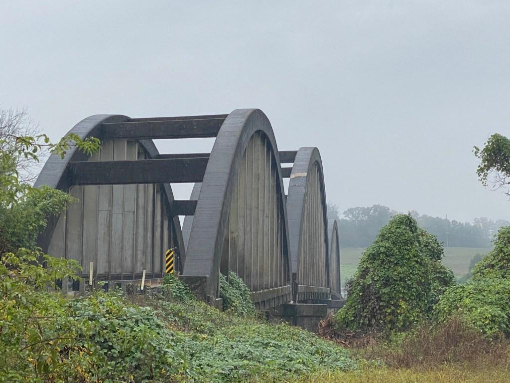 Bridge behind greenery