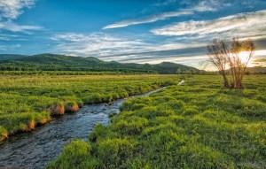 sunset, brook, green meadow