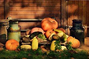 pumpkin, vegetable, food