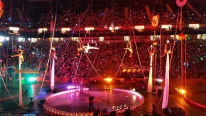 Knoxville Aerial Arts performing with the circus