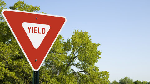 Red yield sign in front of blue sky and tree