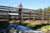 Sarah auf der Brücke die zu den Rentieren führt