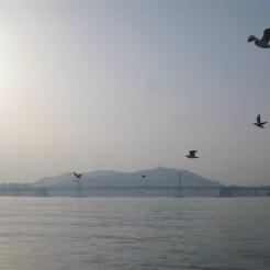 04 Busan Haeundae Mipo Cruise 2