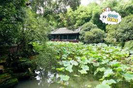 Chengdu 8