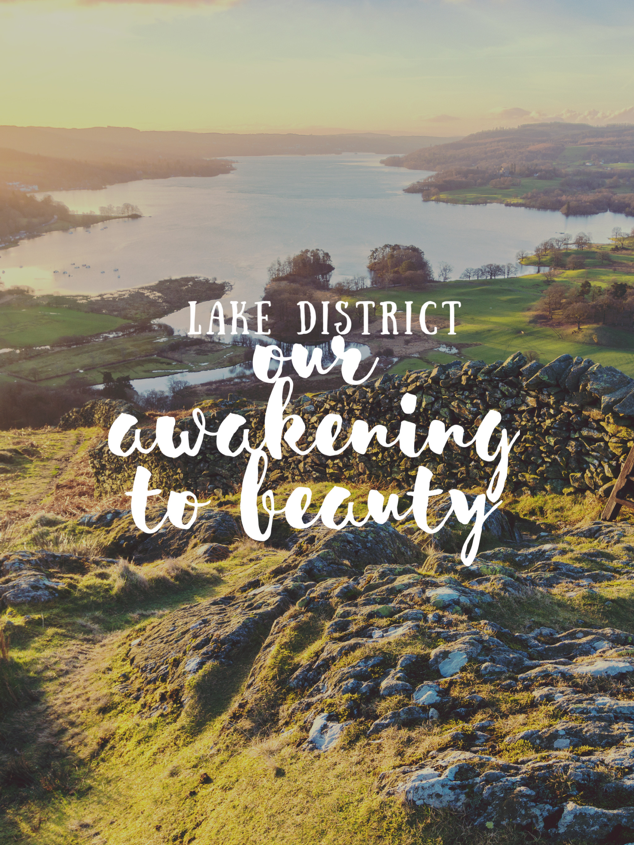 Our Awakening to Beauty