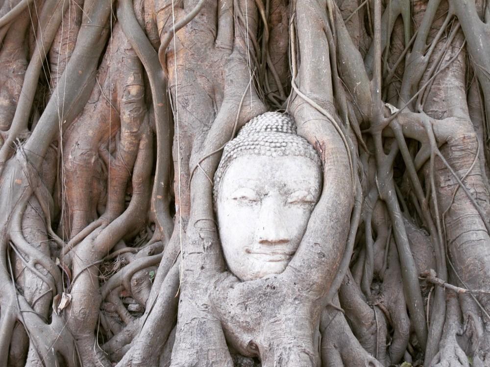 Wat Maha That 3