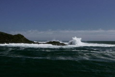 Milford Sound 17