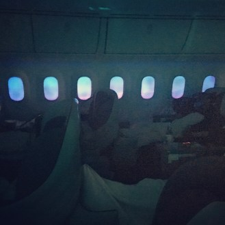 No more pull-down plastic shade! The new Boeing 787 Dreamliner has a dimming effect that shut out sunlight ~